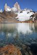 montagna fitzroy, parco, argentina, patagonia