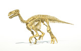 Iguanodon dinosaur full skeleton photo-realistic and scientifica