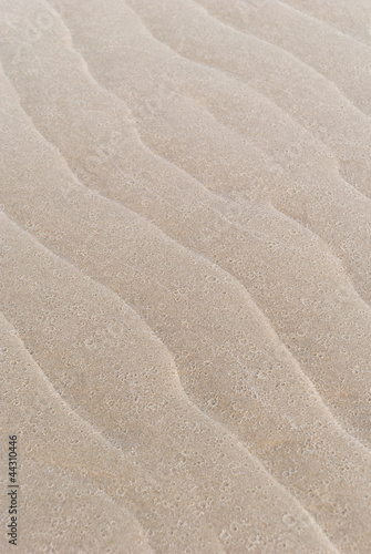 canvas print picture Nordsee Strand
