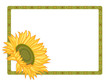 Country sunflower border