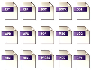 Digital Text File Format Icons