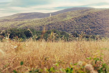 Ozren mountain