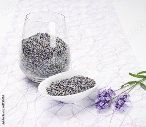 Lavender (Lavendel)