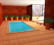 PISCINE INTERIEUR PRIVEE
