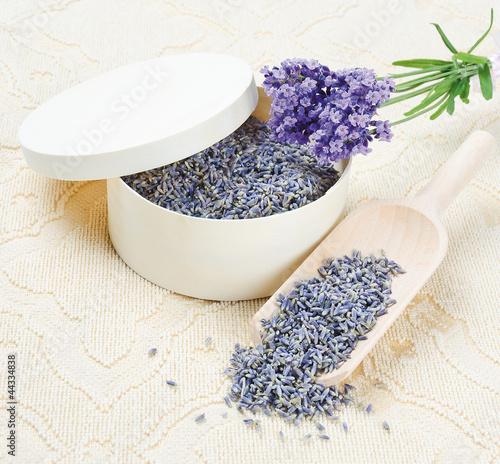 dry Lavender flowers (getrocknete Lavendelblüten)