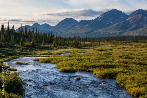 Fototapeten,alaska,landschaft,wanderungen,amerika