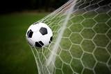 Goal - 44339063