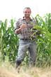 Farmer standing in a cornfield