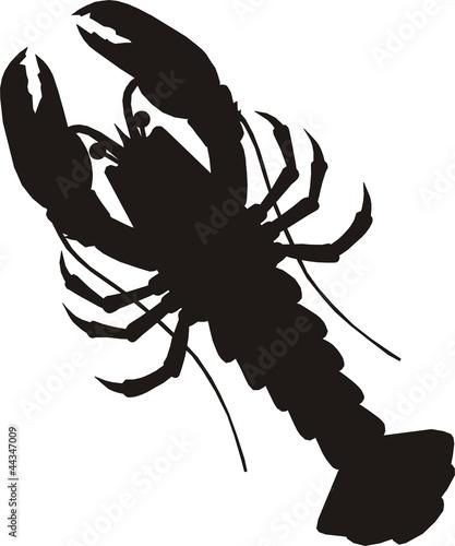 pictogramme homard