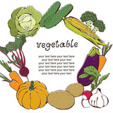 Vegetable background with text frame