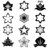 Black and white flower design elements vector set.