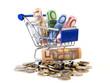 Einkauswagen gefüllt mit Euros