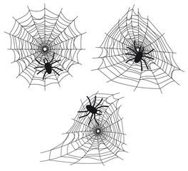 Toiles d'araignées avec araignées