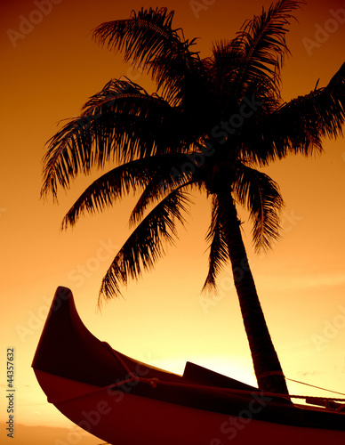 A Palm Tree And Outrigger Canoe Set Against A Hawaiian Sunset