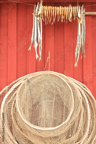 Dried fishes and net