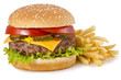 Burger and french fries - 44366011