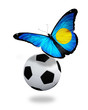 Concept - butterfly with  Palau flag flying near the ball, like