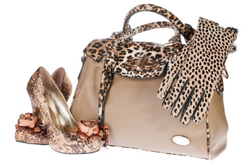 Leopard bag, shoes and gloves