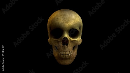 Laughing 3D Skull Loop