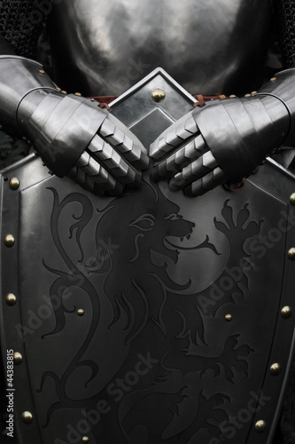 Leinwandbild Motiv knight