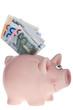 Rosa Sparschwein mit Geldscheinen