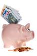 Rosa Sparschwein mit Geldscheinen und Münzen