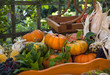 Herbstliches Gemüse und Obst