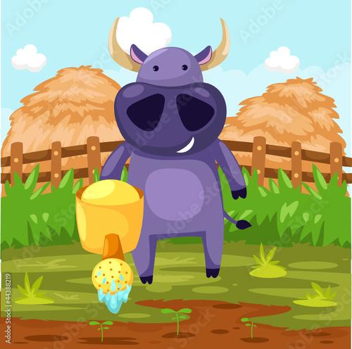 Foto op Canvas Boerderij buffalo with watering can