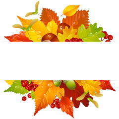 Vector autumn frame with fall leaf 2