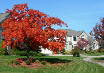 House in a subdivision and landscape in autumn