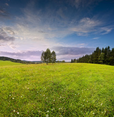 sunset and summer meadow - countryside