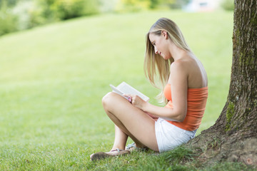 Im Schatten lesen