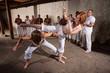 Pair of Capoeria Performers Fighting