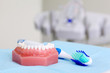 Artificial jaw and blue toothbrush are on table in dental clinic