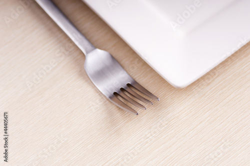 Fork and Plate
