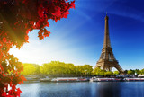 Fototapety color of  autumn in Paris