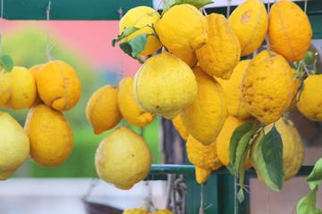 Große Zitronen an einem Marktstand