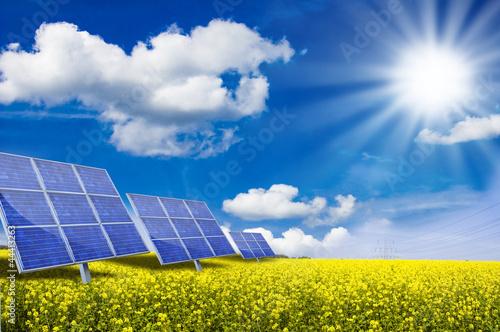 Leinwandbild Motiv Solarkraftwerk auf Rapsfeld