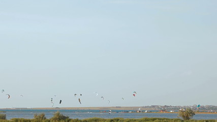 People practicing paragliding sport above the sea on a sunny day