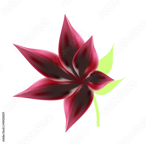 vector red flower illustration mesh