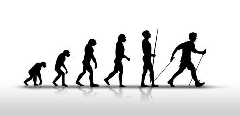 evolution 2808a