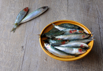 Fresh sardines in a bowl