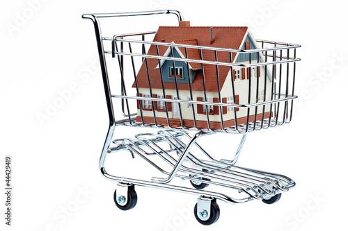 Haus in Einkaufswagen