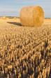 straw rolls on stubble field