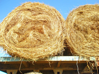 Two rolls of hay