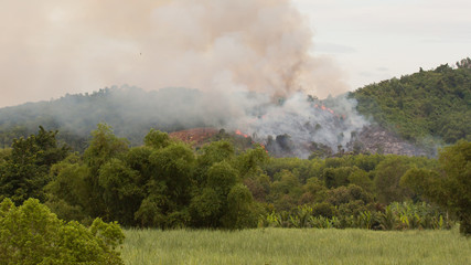Starting forrest fire with lots of smoke