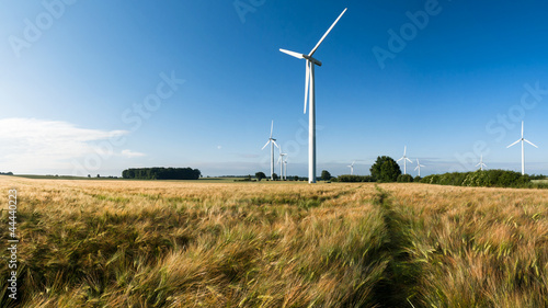 canvas print picture Windkraft, Windpark