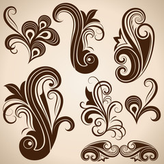 Set of vintage floral design elements vector illustration.