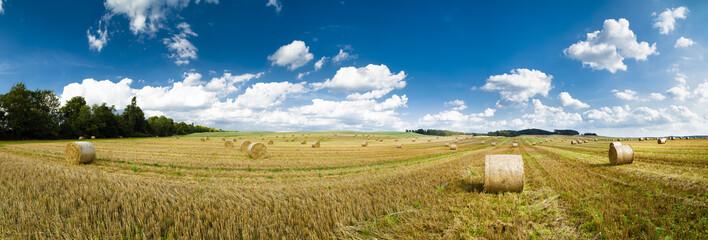 Strohballen auf einem Feld als Panoramafoto