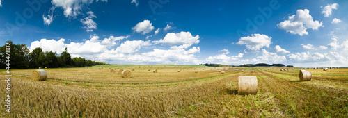 canvas print picture Strohballen auf einem Feld als Panoramafoto